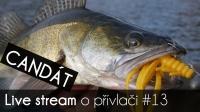 VIDEO: Přívlač Live #13 Candát obecný - lov a jeho život | odpovědi | tipy a triky