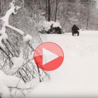 VIDEO: Chytáme na dírkách po Česku