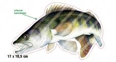Rybářská samolepka CANDÁT L