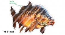 Rybářská samolepka KAPR P