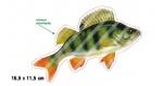 Rybářská samolepka OKOUN 1 P