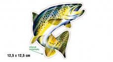 Rybářská samolepka PSTRUH
