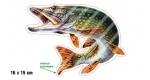 Rybářská samolepka ŠTIKA L