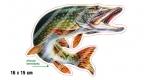 Rybářská samolepka ŠTIKA P