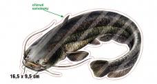 Rybářská samolepka SUMEC L