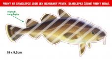 Rybářská samolepka TRESKA P