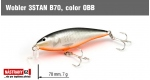 Wobbler 3STAN B70, Color: OBB